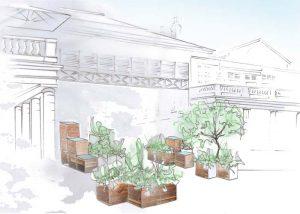 The Avant Garden planted in GroChar compost