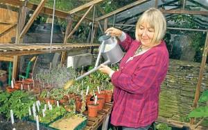Val Bourne, peat free gardening
